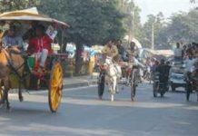 Krnal chariot race