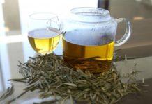 Olive-Leaf-Tia-Rajasthan