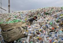 NGT told Delhi Government: Submit status report on plastic ban