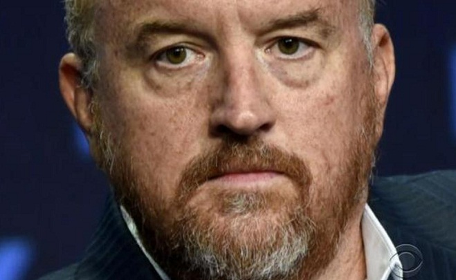 Netflix did not make new show after allegations against Louis C.K
