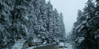 Snow in the areas of Jammu, Mughal road still closed
