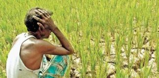 Farmers in Delhi will demand freedom from demand, debt