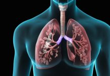 Indian people's lung capacity is down 30 percent compared to North American: scientists