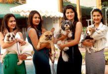 Jaipur to start two-day 'Jaipur Dog Show' on February 3