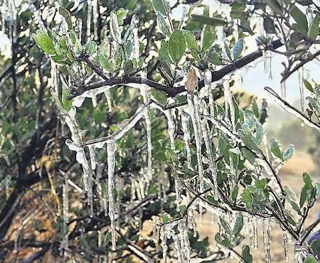 Winter, Fatehpur minus 3.5, Jaipur coldest