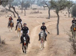 GALLOPS OF INDIA